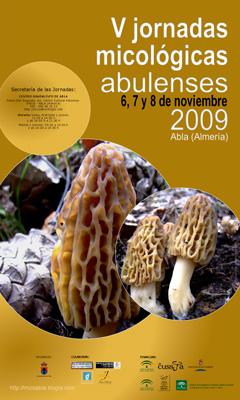 PROGRAMA V JORNADAS MICOLÓGICAS ABULENSES 2009